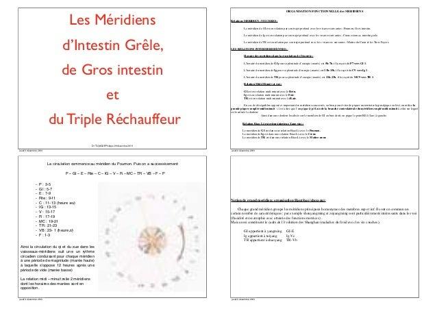 ORGANISATION FONCTIONNELLE des MERIDIENS  Les Méridiens  Relations MERIDIEN –VISCERES : Le méridien de GI est en relation ...