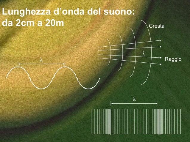 Lunghezza d'onda del suono: da 2cm a 20m λ Raggio Cresta λ λ