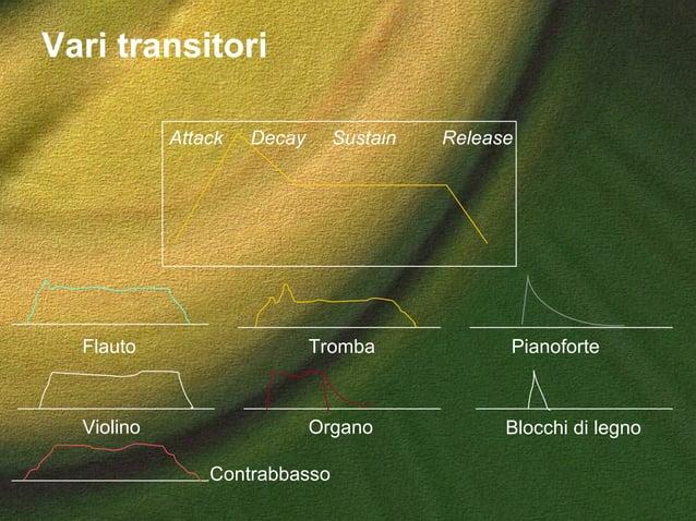 Vari transitori Attack Decay Sustain Release Flauto Tromba Violino Pianoforte Contrabbasso Organo Blocchi di legno