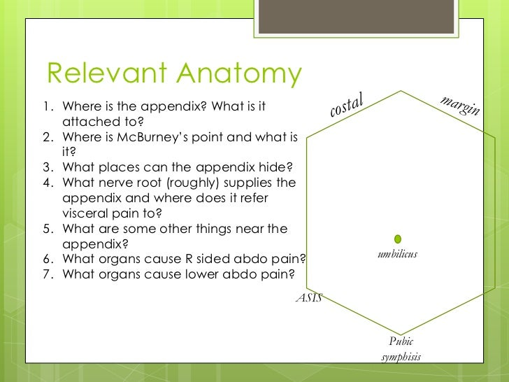 """Relevant Anatomy1. Where is the appendix? What is it   attached to?2. Where is McBurney""""s point and what is   it?3. What p..."""