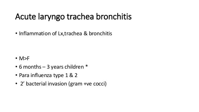 Acute laryngo trachea bronchitis  • Inflammation of Lx,trachea & bronchitis  • M>F  • 6 months – 3 years children *  • Par...