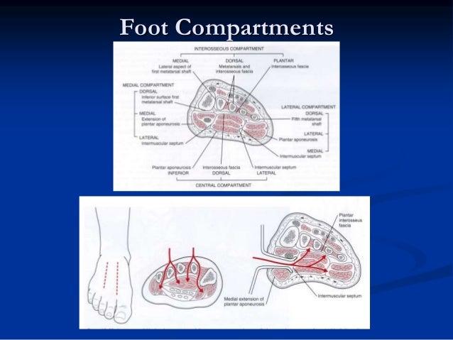 Acute Compartment Syndrome Dr Sandeep Bhadoo