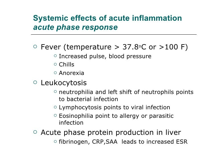 acute inflammation essay Nursing care: acute pancreatitis - essay example acute inflammation of the organ is actually let us find you another essay on topic nursing care: acute.