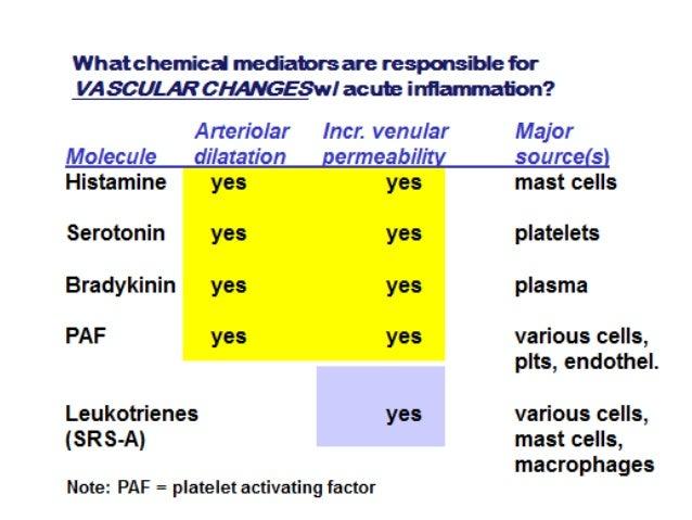 Acute inflammation handouts 30 9-2016