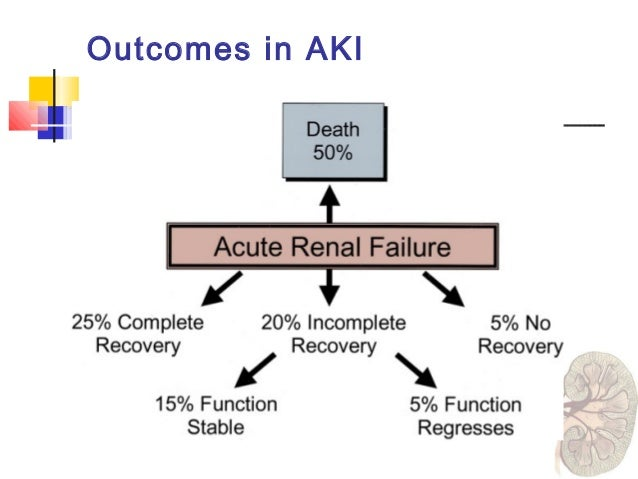 Acute kidney injury fernando liao mortality in aki has remained very high ccuart Gallery