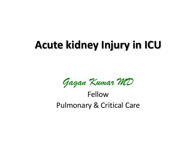 Acute kidney Injury in ICU Gagan Kumar MD Fellow Pulmonary & Critical Care