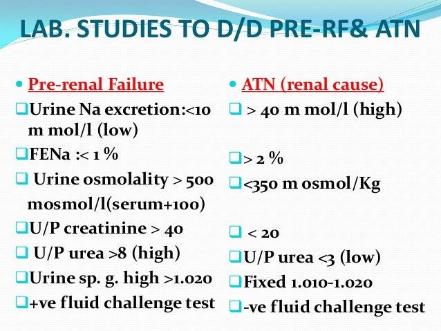 Acute Renal Failure By Dr Rafique