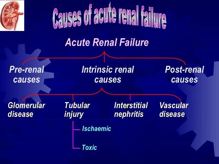 Acute renal failure in icu ..... Slide 3