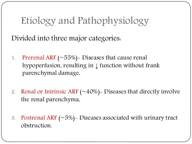 Acute Renal Failure Patho Physiology Anaesthetic Management 638 Cb Categories Function