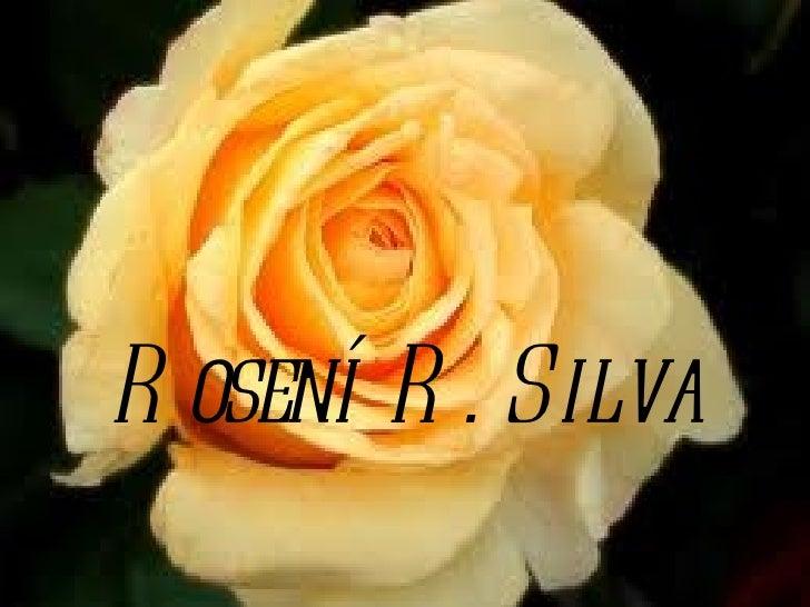 Rosení R. Silva