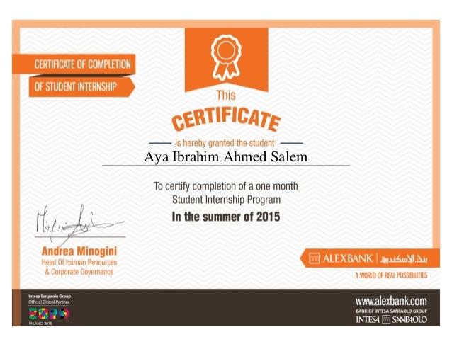 Aya Ibrahim Ahmed Salem