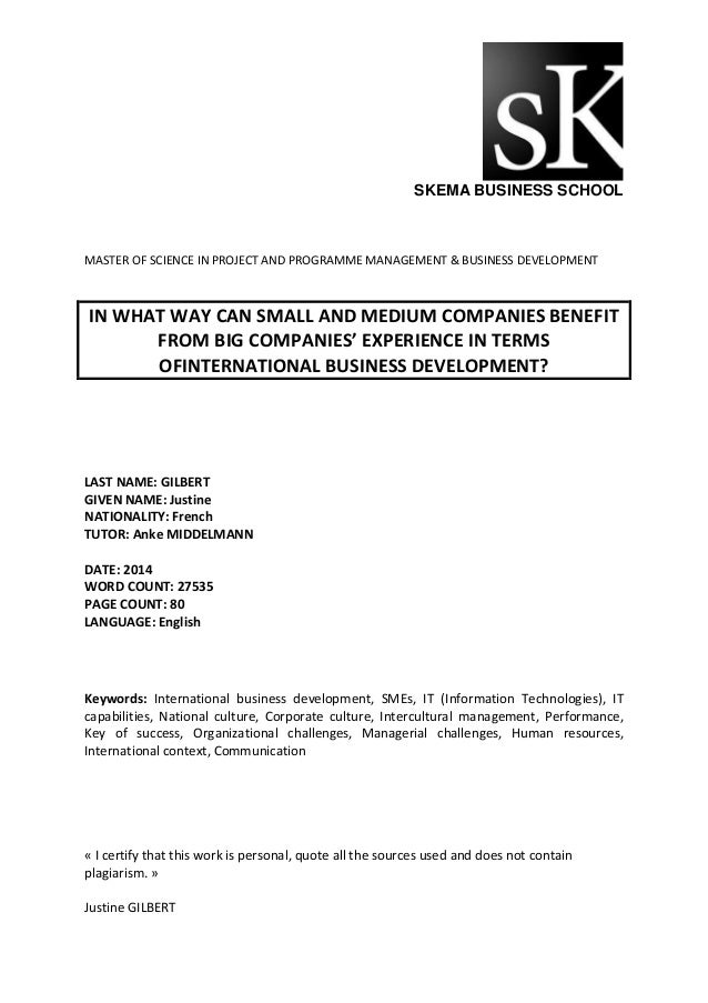 Master thesis business development