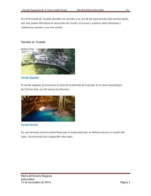 """Escuela Preparatoria No. 8 """"Carlos Castillo Peraza'' Brenda Estefania Quiroz Marin 1 E  En la Península de Yucatán abundan..."""