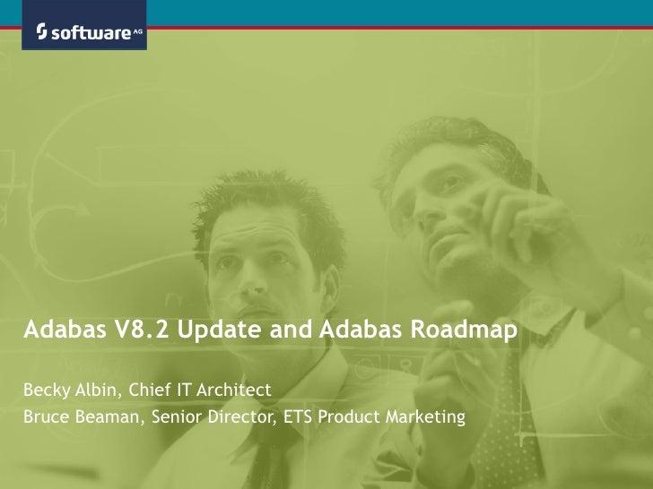 Database – ADABAS – CDT Services