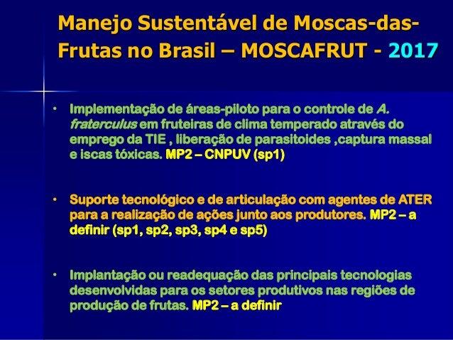 • Implementação de áreas-piloto para o controle de A. fraterculus em fruteiras de clima temperado através do emprego da TI...