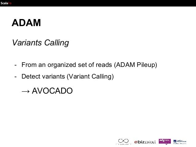 ADAM  Variants Calling  - From an organized set of reads (ADAM Pileup)  - Detect variants (Variant Calling)  → AVOCADO