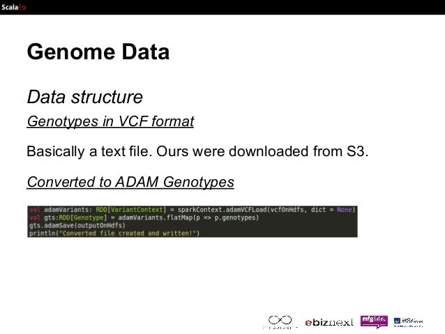 Genome Data  Data structure  Genotypes in VCF format  Basically a text file. Ours were downloaded from S3.  Converted to A...