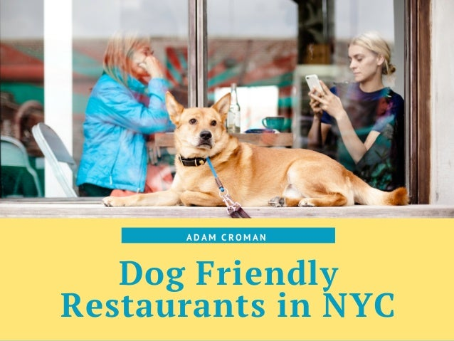 Dog Friendly Restaurants in NYC A D A M C R O M A N