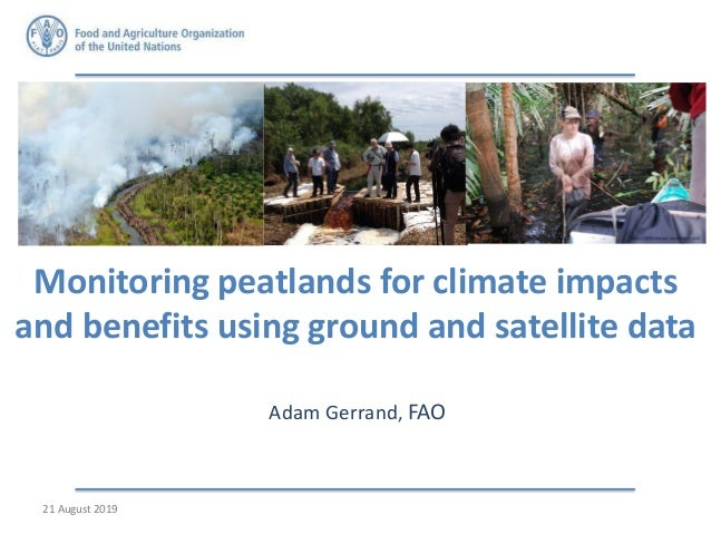Monitoring peatlands for climate impacts and benefits using ground and satellite data Adam Gerrand, FAO Adam to look on On...