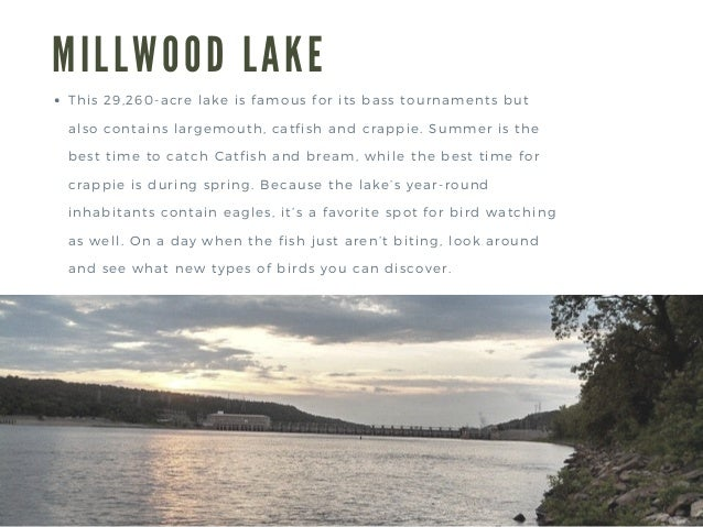 Adam Kuettel | Top Five Arkansas Fishing Destinations