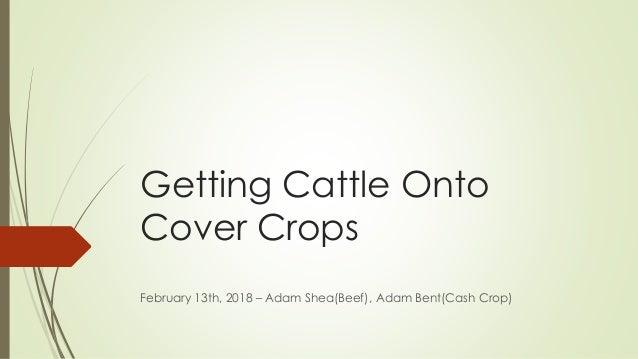 Getting Cattle Onto Cover Crops February 13th, 2018 – Adam Shea(Beef), Adam Bent(Cash Crop)
