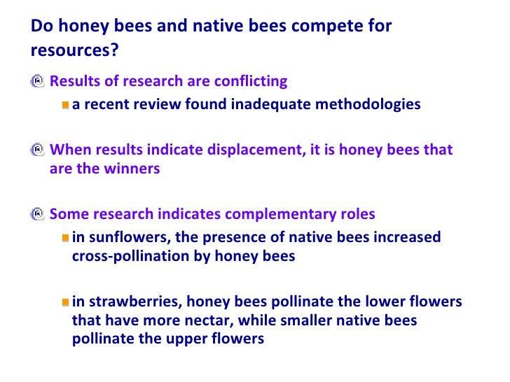Do honey bees and native bees compete for resources? <ul><li>Results of research are conflicting </li></ul><ul><ul><li>a r...