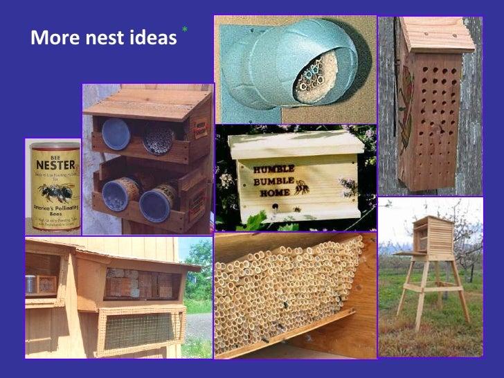 More nest ideas *