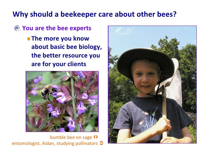 Why should a beekeeper care about other bees? <ul><li>You are the bee experts </li></ul><ul><ul><li>The more you know abou...