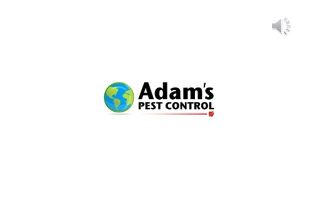 Adam's Pest Control provides lawn care services in Port St Lucie and Jupiter.