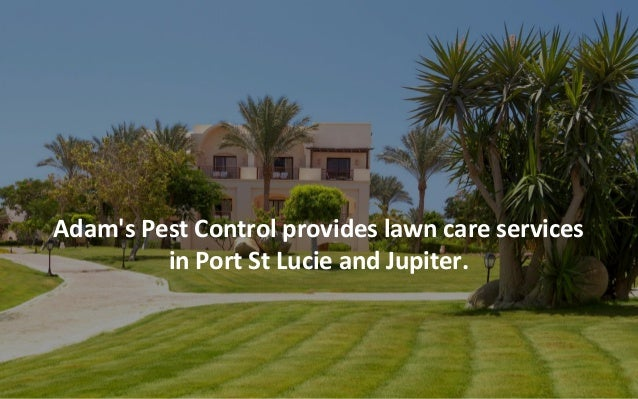 Port St Lucie & Jupiter, FL Lawn Care Service Slide 2