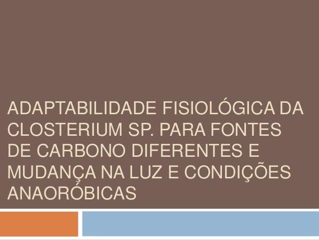 ADAPTABILIDADE FISIOLÓGICA DA  CLOSTERIUM SP. PARA FONTES  DE CARBONO DIFERENTES E  MUDANÇA NA LUZ E CONDIÇÕES  ANAORÓBICA...