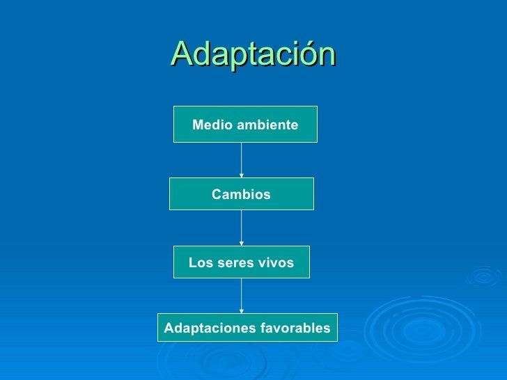 Adaptación Medio ambiente Cambios Los seres vivos Adaptaciones favorables