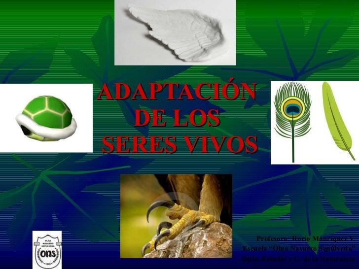Adaptación De Seres Vivos