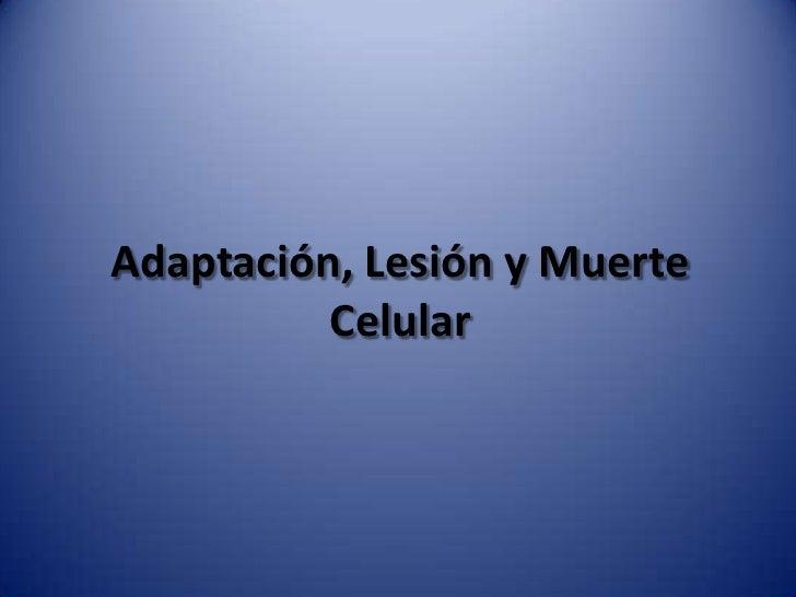 Adaptación, lesión y muerte celular