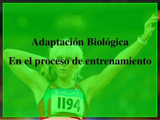 Adaptación BiológicaEn el proceso de entrenamiento