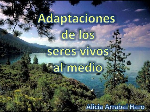 ÍNDICE:o Debemos sabero Definición y tipos de organismoso Adaptaciones a la escasez de aguao Adaptaciones a los cambios de...