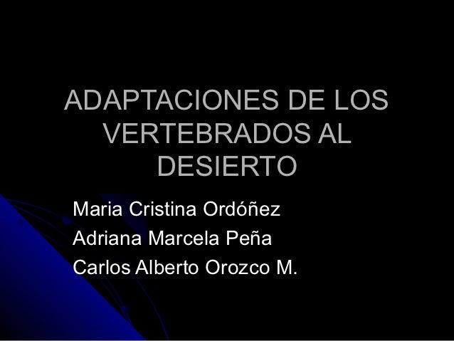 ADAPTACIONES DE LOS  VERTEBRADOS AL     DESIERTOMaria Cristina OrdóñezAdriana Marcela PeñaCarlos Alberto Orozco M.