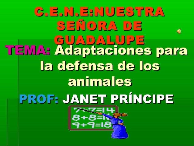 C.E.N.E:NUESTRAC.E.N.E:NUESTRA SEÑORA DESEÑORA DE GUADALUPEGUADALUPE TEMA:TEMA: Adaptaciones paraAdaptaciones para la defe...