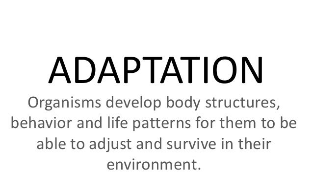 ADAPTATION Organisms develop body structures, behavior and life patterns for them to be able to adjust and survive in thei...