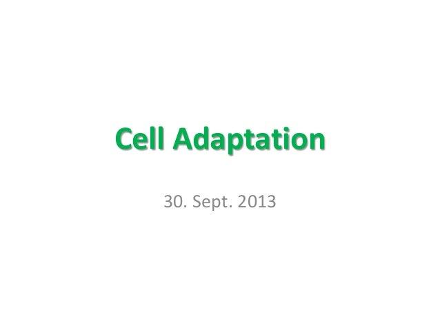 Cell Adaptation 30. Sept. 2013