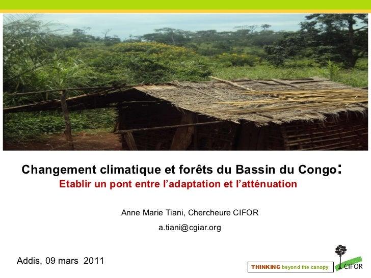 Changement climatique et forêts du Bassin du Congo :  Etablir un pont entre l'adaptation et l'atténuation  <ul><li>Anne ...