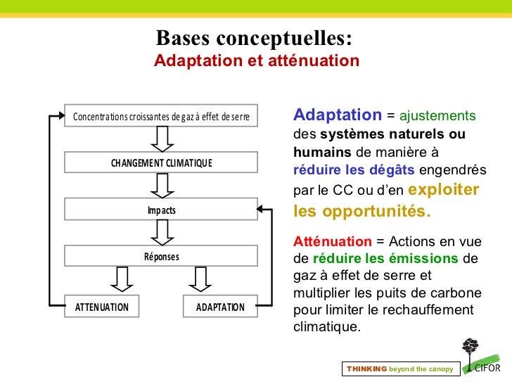 mesures d adaptation au changement climatique pdf