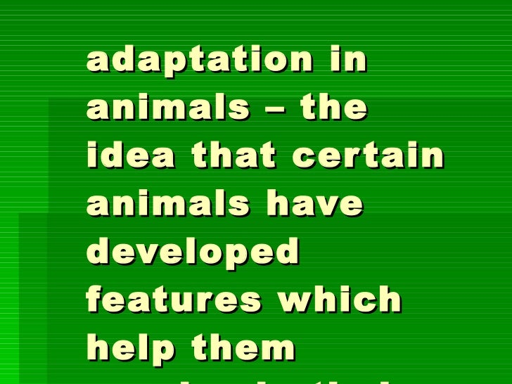 adaptation in animals – the idea that certain animals have developed features which help them survive in their environment