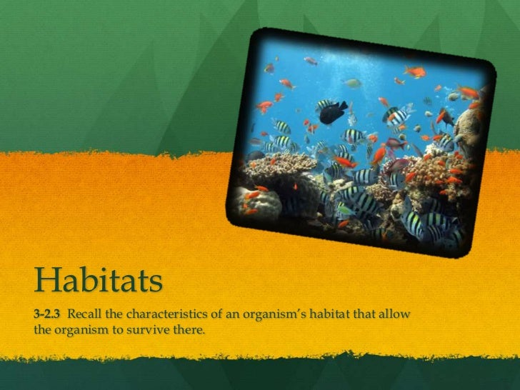 Habitats <br />3-2.3  Recall the characteristics of an organism's habitat that allow the organism to survive there.<br />
