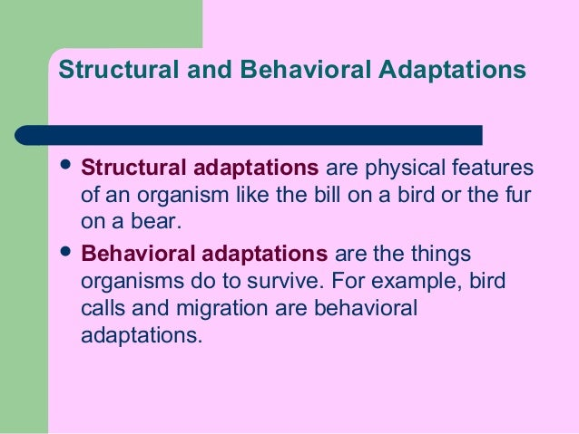 the physiological and structural changes adapted by animals for survival What is an example of a physiological for survival bbc of structural the way some plants have adapted to cactus spines are.