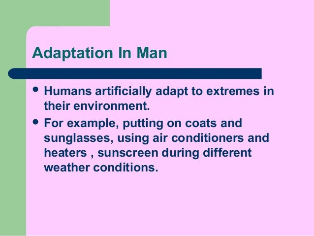 Adaptations in animals p6 elearning 2015 - day 1