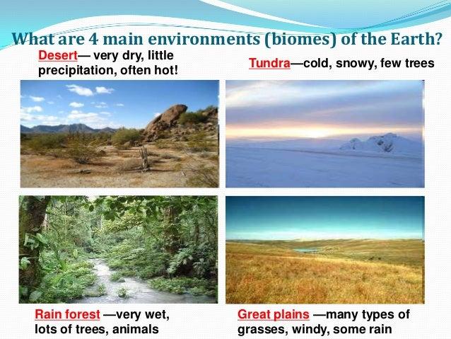 Natural Environments Vs All Natural