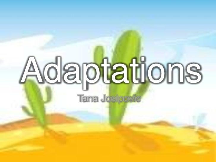 Adaptations   Tana Josipovic