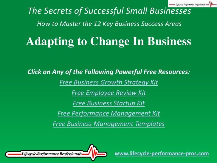 The Secrets of Successful Small Businesses<br />How to Master the 12 Key Business Success Areas<br />Adapting to Change In...