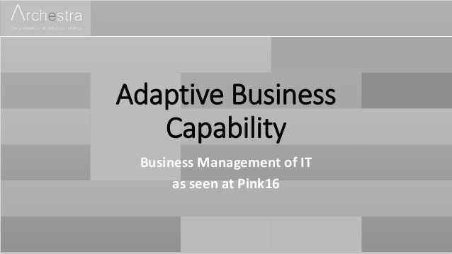 Adaptive Business Capability Business Management of IT as seen at Pink16